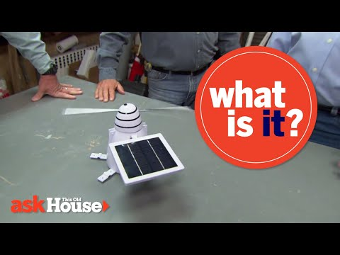 """What Is It?"" 
