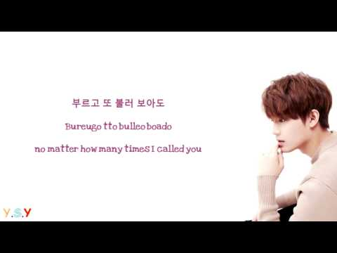 Taeil (태일)  - Because of you [Han/Rom/Eng Lyrics]
