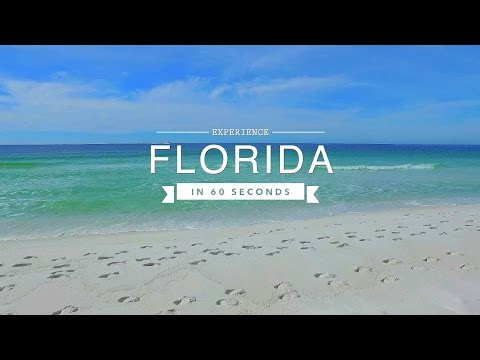 Florida Travel: Experience the Sunshine State in 60 Seconds