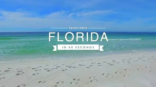Video Florida Travel: Experience the Sunshine State in 60 Seconds download MP3, 3GP, MP4, WEBM, AVI, FLV Januari 2018