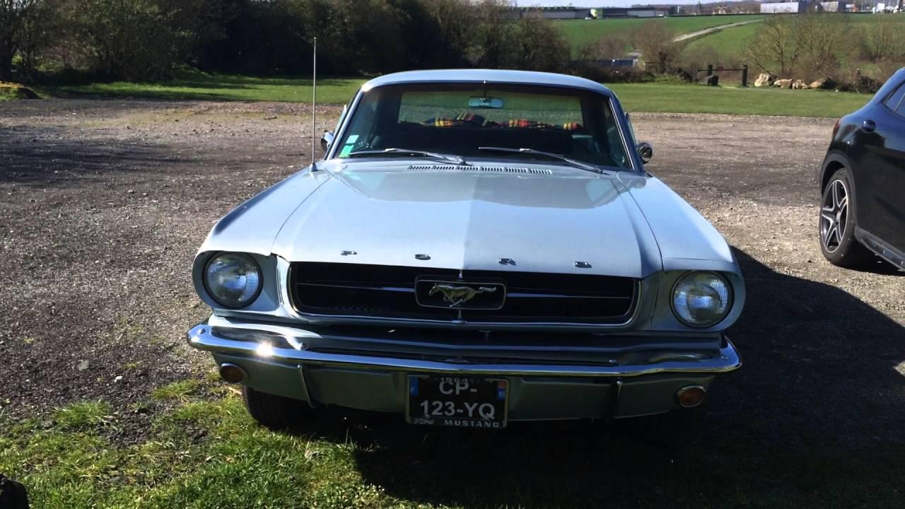 Mustang 64 5