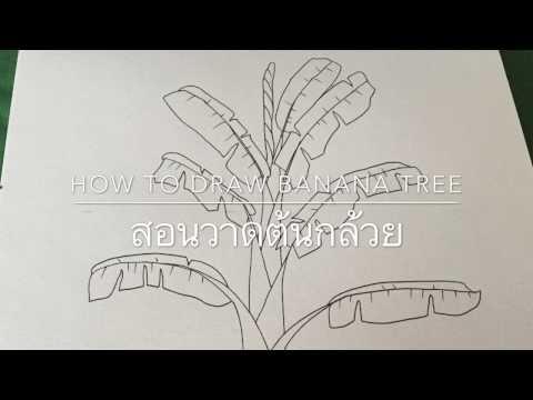 สอนวาดต้นกล้วย how to draw banan
