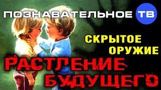 Скрытое оружие  Растление будущего (Познавательное ТВ, Михаил Величко)