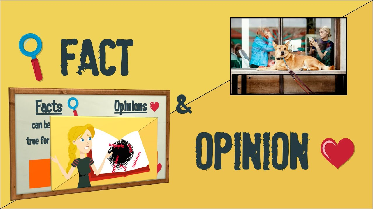 medium resolution of Fact and Opinion   Reading Strategies   EasyTeaching - YouTube