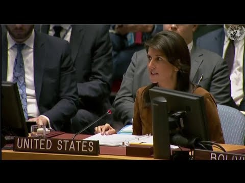UN Security Council Emergency Meeting on Chemical Weapons Use in Syria