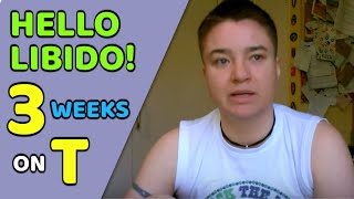 FTM | 3 Weeks On testosterone.- Hello Sex Drive!