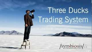 Three Ducks Trading System (FOREX)
