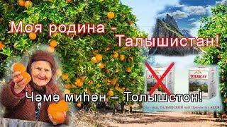 Родина моя - Талышистан: Talyshistan Tv 18.11.2019 News