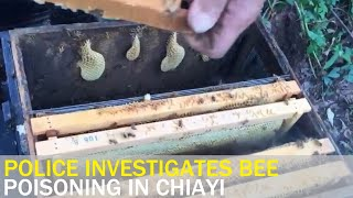 Police investigate poisoning of bees at Chiayi farm | Taiwan News | RTI