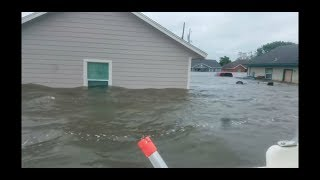 Hurricane flood damage drowned horses UNSEEN FOOTAGE