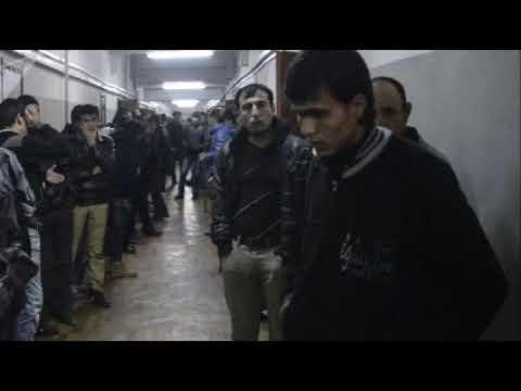 Сколько Москва заработала на мигрантах