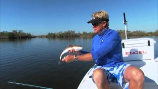 Mirrolure Surface Walker Topwater Plugs for Redfish Trout and Snook