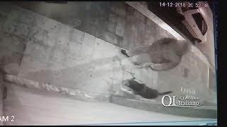 Cacca fuori da negozio in via Concilio Vaticano II, il video del commerciante
