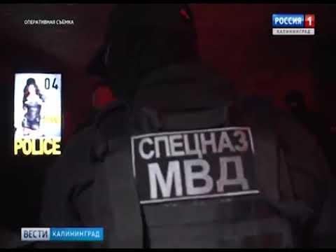 Полицейские провели рейд по ночным клубам Калининграда