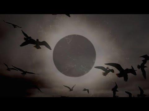 Ahimsa - Eclipse