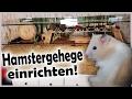 Hamstergehege/Nagerterrarium einrichten | Februar 2017