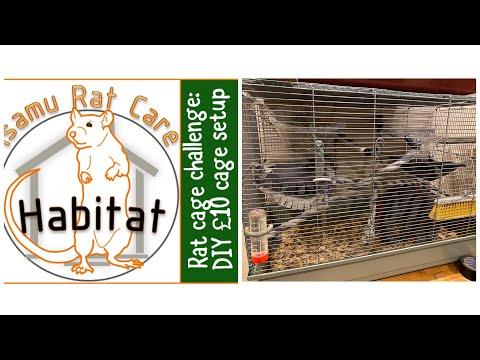 rat-cage-challenge:-diy-cage-set-up-under-£10