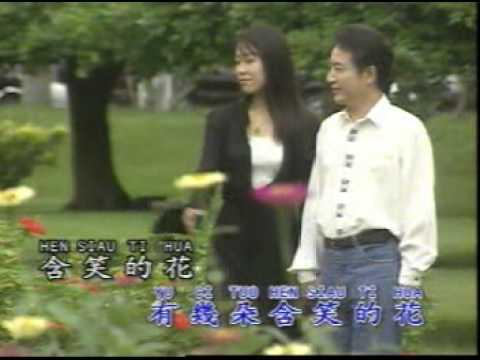 青山 - 淚的小花 MV