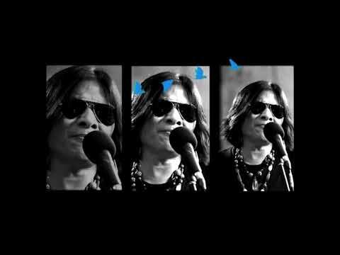 ฟังเพลง - มองอย่างนก มาลีฮวนน่า ยรรโฟล์ค - YouTube