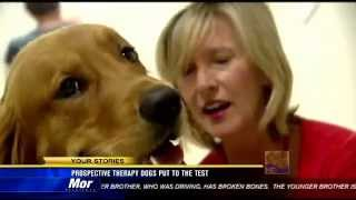 San Diego Pet Therapy Programs At Scripps Hospital