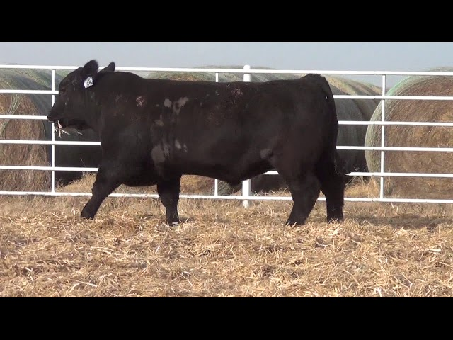 Express Ranches Lot 182