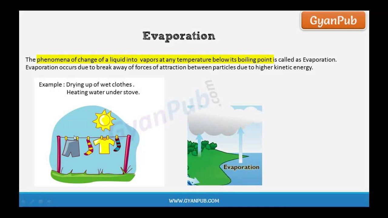 Cbse Class 9 Science Evaporation Youtube