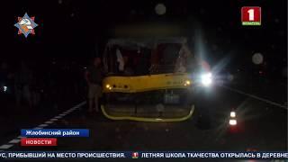 В Жлобинском районе столкнулись автобус и лошадь