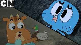 Gumball & Ivandoe | 3 Ways to Survive in the Forest | Cartoon Network