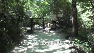 北山公園~甲山をハイキング