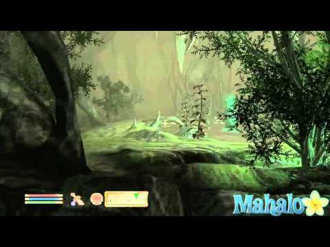 Elder Scrolls 4 Oblivion DLC - Shivering Isles Main Walkthrough 27 - Symbols Of Office Part 2