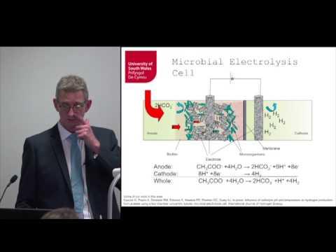 Renewable Energy - Inaugural Lecture of Professor Giuliano Premier