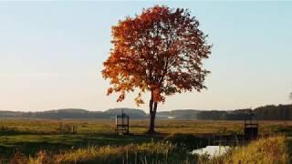 Осенний фото-мото тур