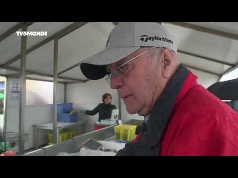 Documentaire TV: Daurade et spiruline de la côte Bleue (2017 - 2018)