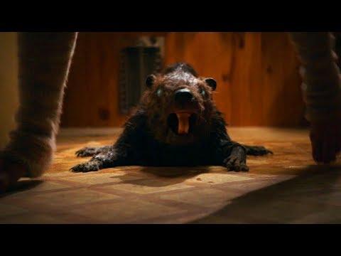 几分钟看B级僵尸片《僵尸海狸》一种变异海狸!智商奇高,武力惊人,从此称霸小岛为所欲为
