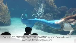 Rockfire Water showcases - Merquarium
