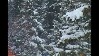 Турбаза теплые озера на Снежной.avi(Турбаза теплые озера на Снежной,, 2012-05-18T10:31:44.000Z)