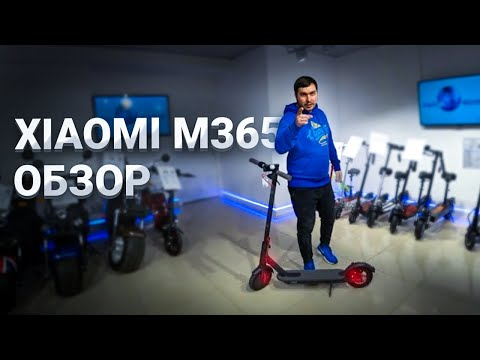 Электросамокат Xiaomi M 365 обзор Electric Scooter