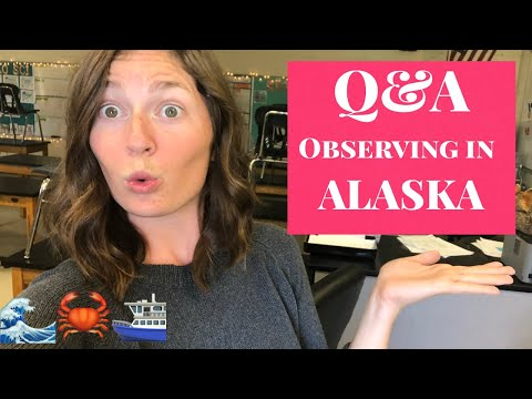 Q&A About Being An Observer In Alaska | Marine Biology