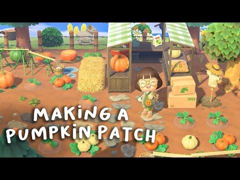 i made a pumpkin patch!! please watch :-)