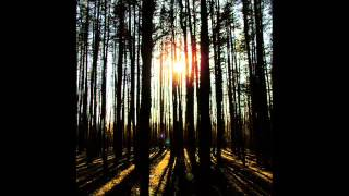 Michael Nyrman - Deep Into The Forest (ost the piano)