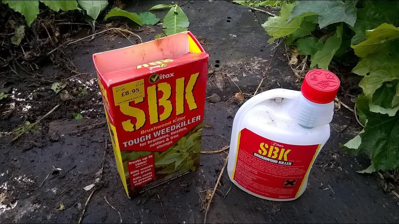 trying too kill a tree stump with sbk tough weed and. Black Bedroom Furniture Sets. Home Design Ideas