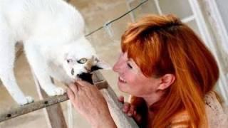 The Work of Martha Kane in Malta Thumbnail