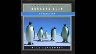 Douglas Quin - Weddell Seals (Underwater)