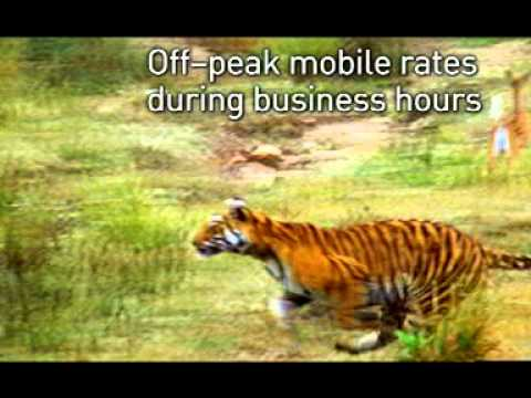 Optus business mobile plans