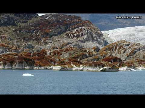 Chile: Chilean Fjords, Cape Horn. Argentina: Tierra del Fuego. South America and Antartica part 2