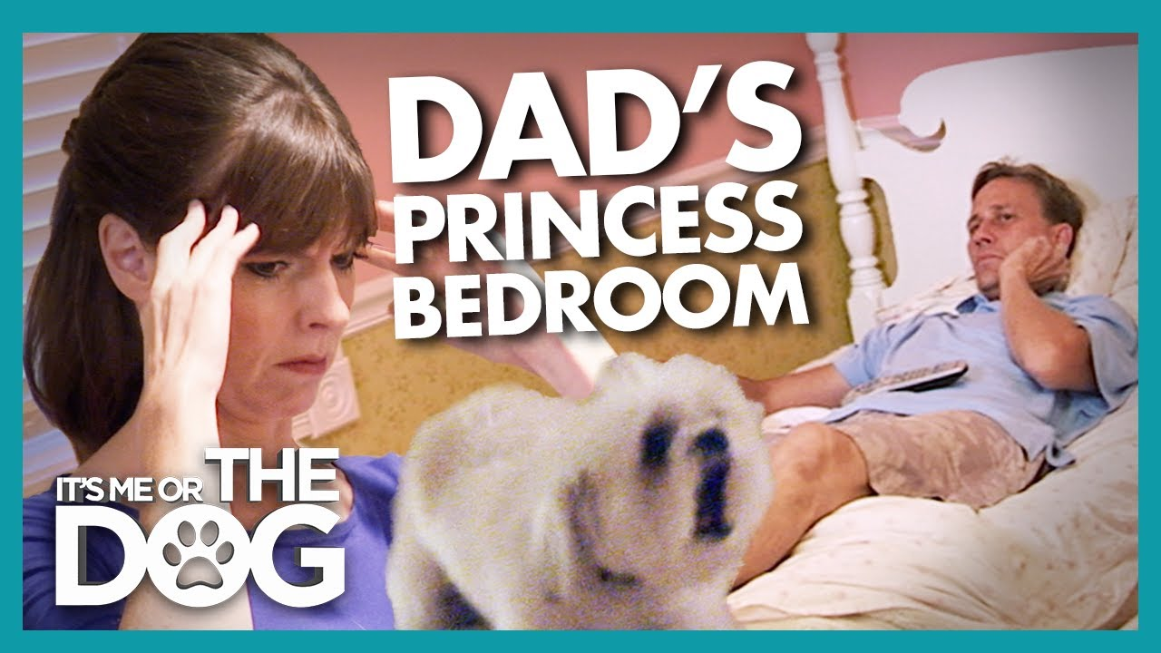 Dad Steals Daughter's Bedroom to Avoid Nightmare Dog | It's Me or the Dog