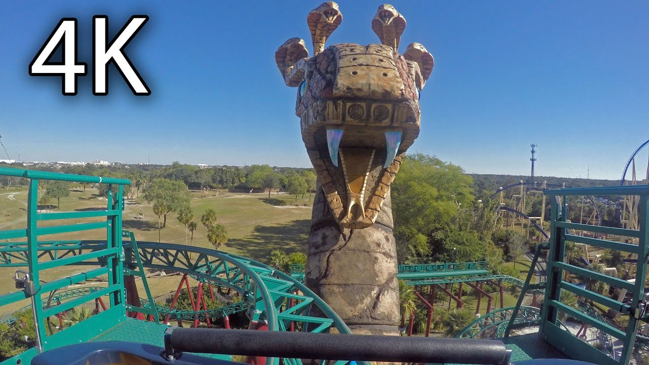 Cobra 39 s curse front seat on ride 4k pov busch gardens tampa youtube for Busch gardens tampa bay cobra s curse