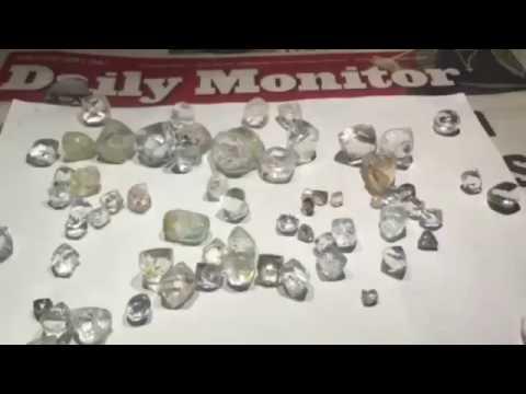 Seven 11 Precious Metals Diamond Showcase