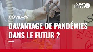 Covid-19 : « Avoir une pandémie comme celle-ci tous les dix ans, c'est possible »
