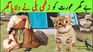 Zakhmi Billi Aur Be Ghar Aurat  Aurat Ko Mila Ghar  Wounded Cat And Noble Woman  Billi Ka Waqia